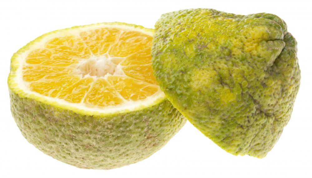 Ugli® is a tangelo variation that involves a cross between a grapefruit, a tangerine and an orange.