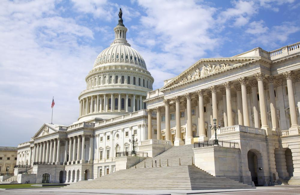 Members of the House of Representatives and Senate are two types of federal politicians in the United States.