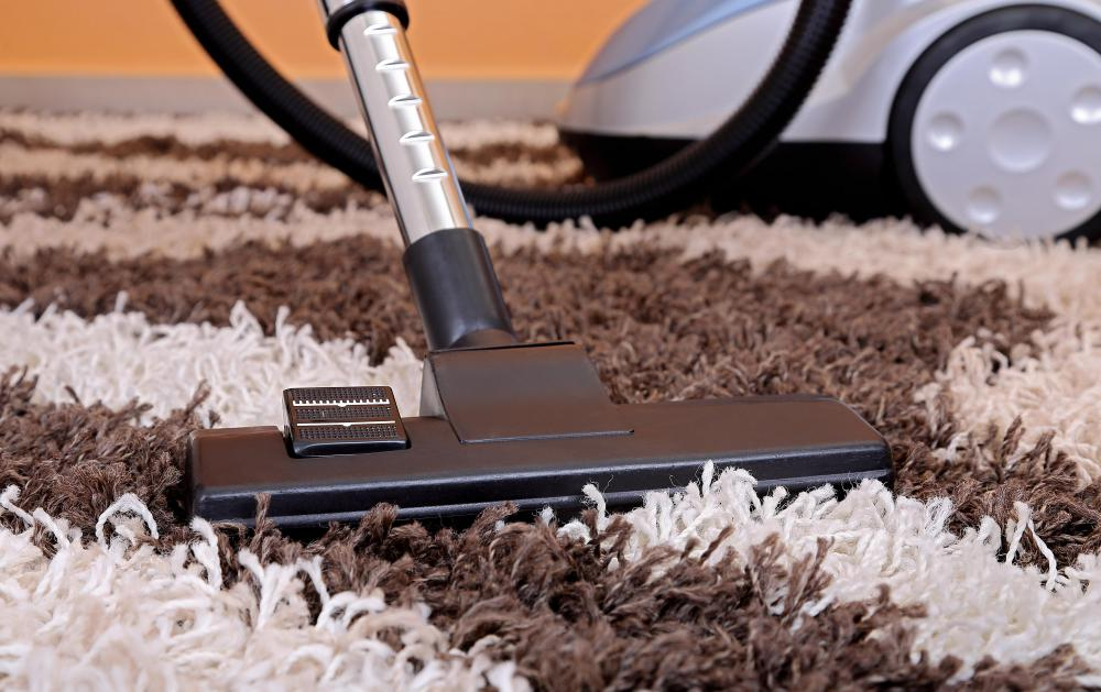 A canister vacuum cleaner is lighter and more portable than regular vacuums.