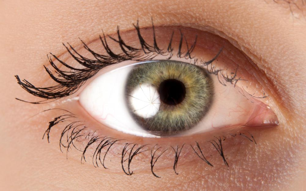 Regardless of eye color, people possess brown pigment in their eyes.