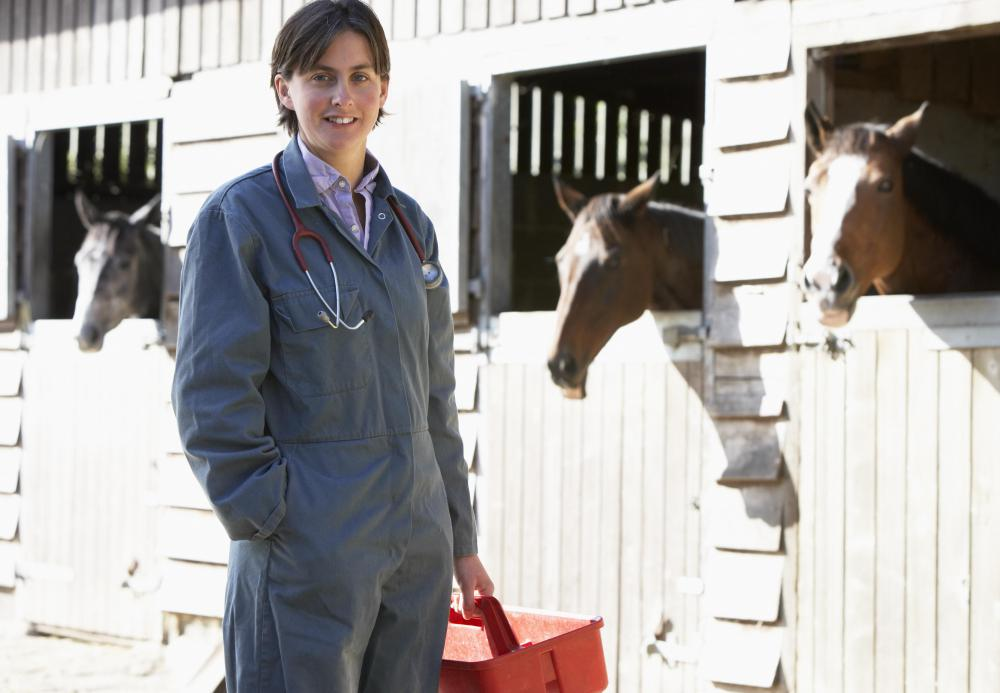 Vets caution against rotating dewormers too frequently.