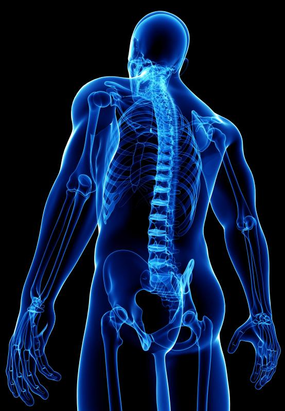 A positive Romberg's test may indicate disease in the posterior aspect of the spinal cord.