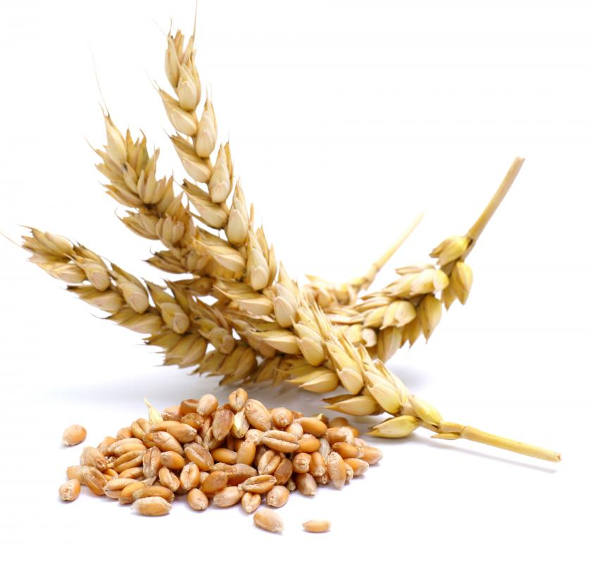Commodities such as wheat are often traded on the futures market.