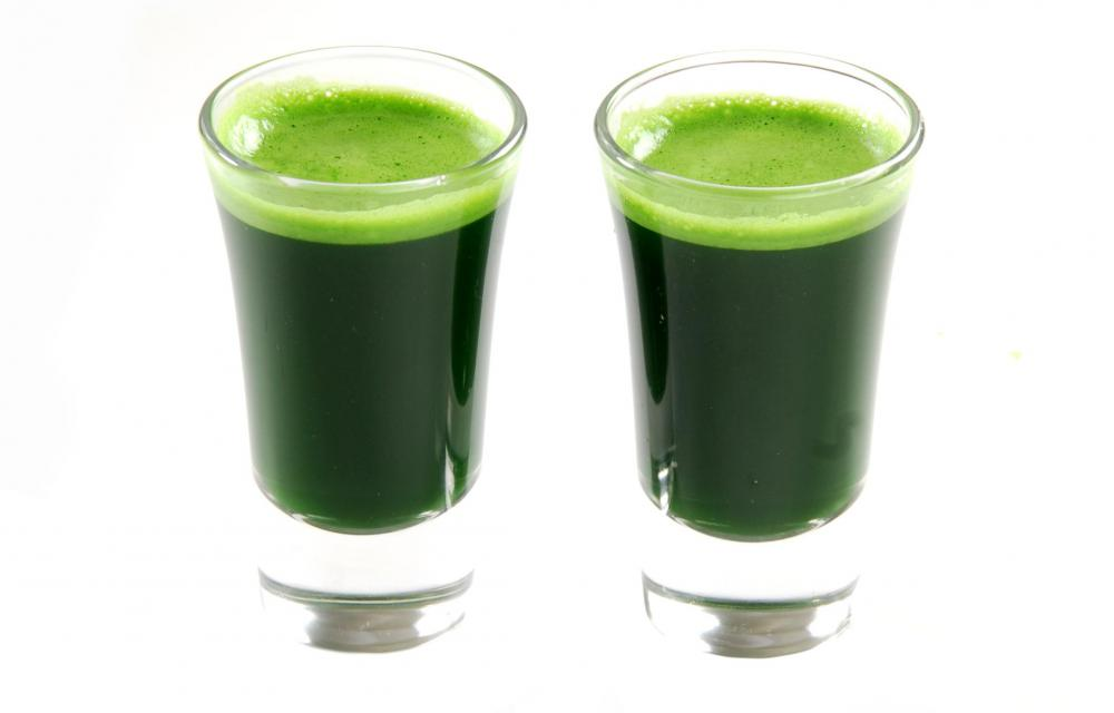 Wheatgrass shots are green due to high levels of chlorophyll, which is thought by many to have health benefits.