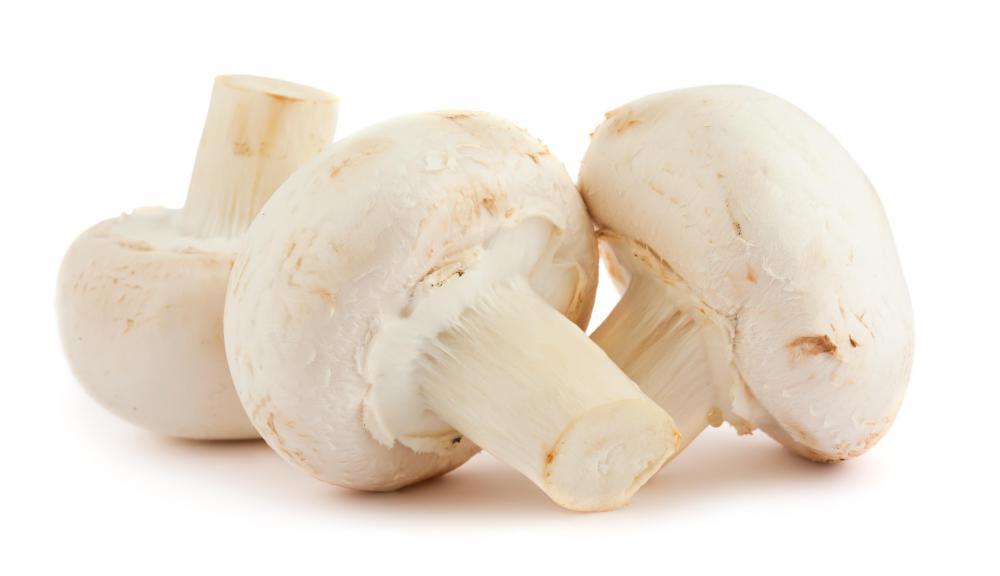 Mushrooms contain serotonin.
