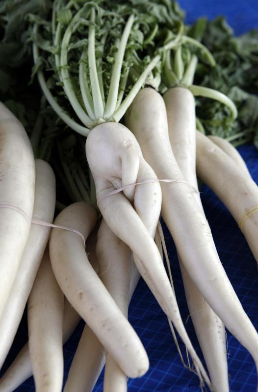 Daikon can be shredded for use as nigiri sushi garnish.
