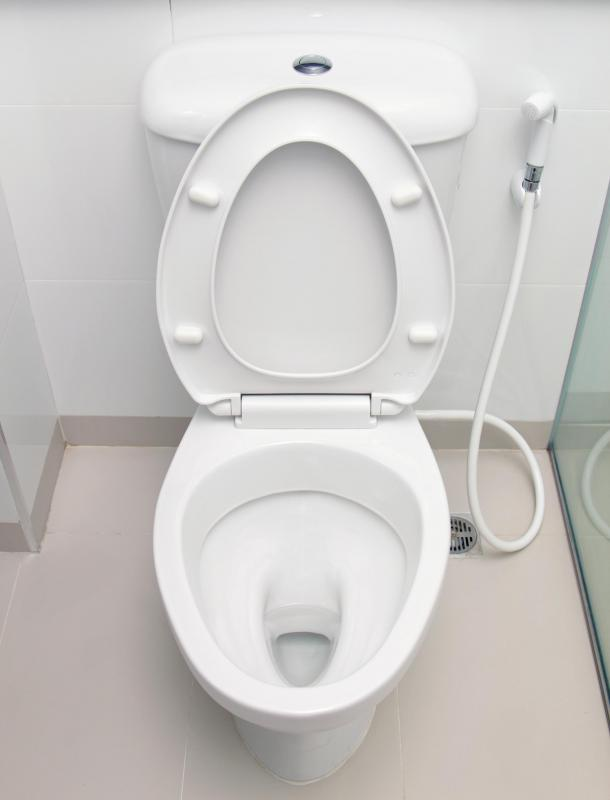 A Basement Toilet May Feature A Drain Next To The Basin In Case Of Flooding.