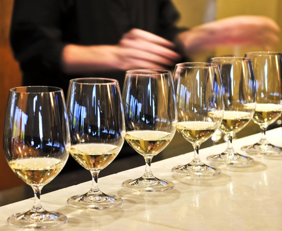 Glasses of white wine at a wine evaluation event.