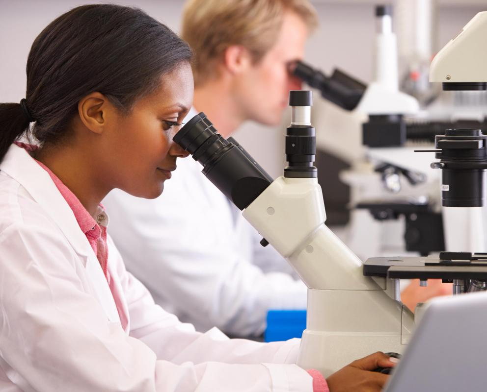 what are the different types of medical laboratory scientist jobs
