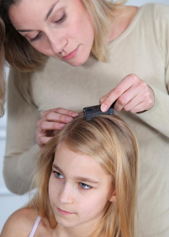 A nit comb is used to remove lice and nets from a person's hair.