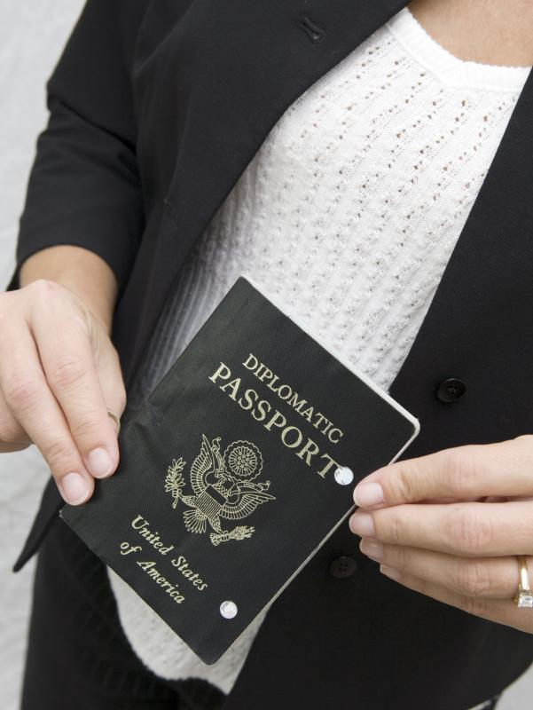 Diplomats and their families are often issues special official passports, but they must still hold a visa from the country where they work.