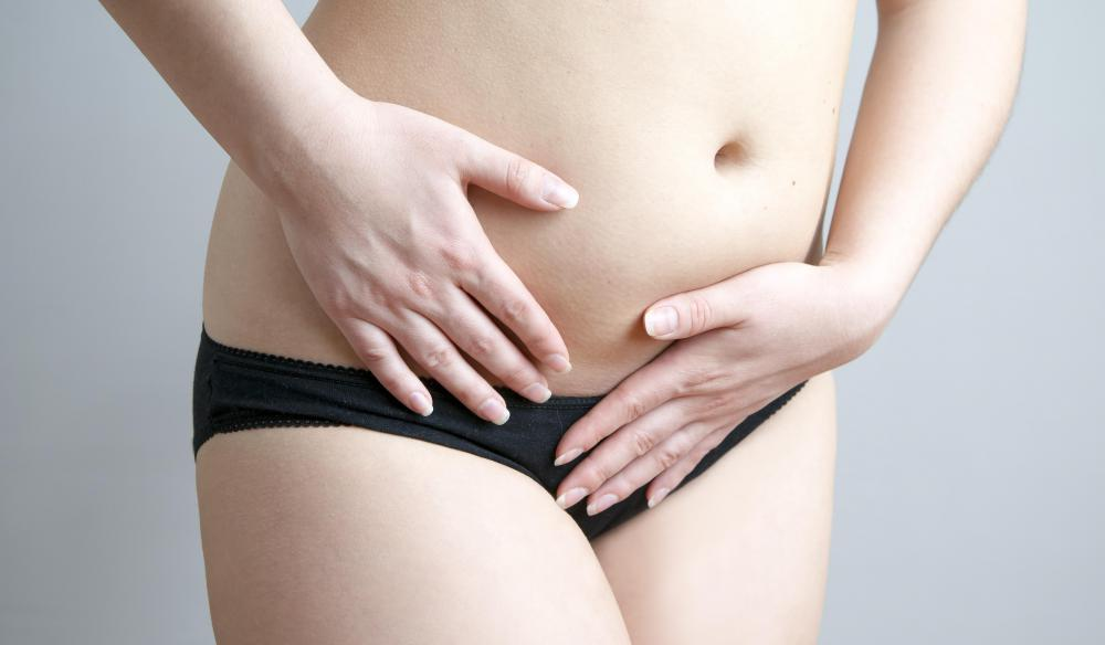 All of the external organs of the female reproductive system are located between the mons pubis and the perineum.