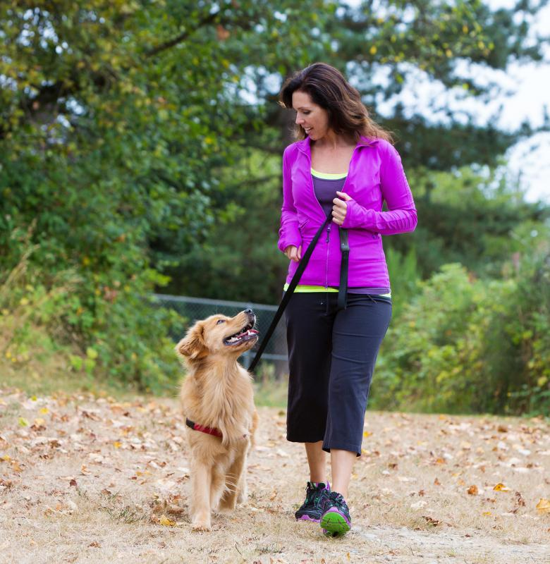 The GPS dog tracking systems available on the consumer market may vary greatly in cost.