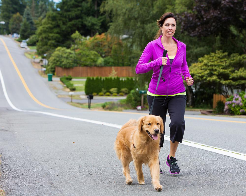 Jogging with a leashed dog can provide good exercise for both pet and human.