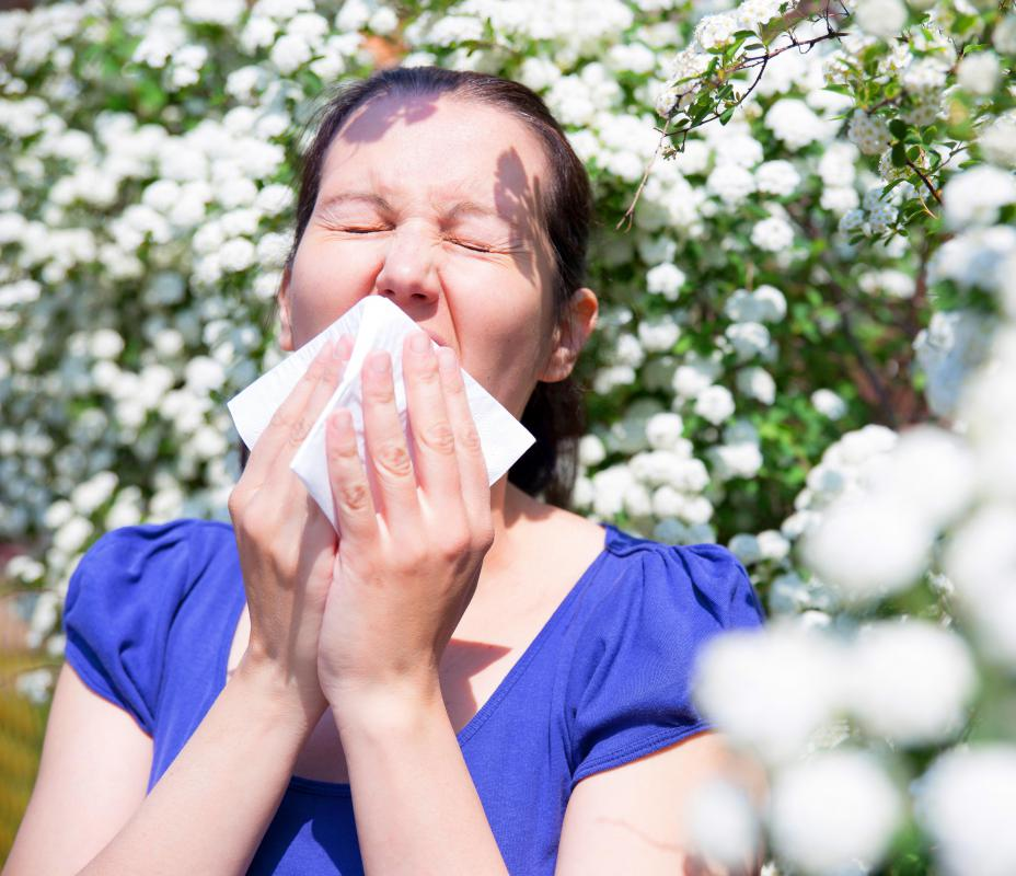 Pollination allows plants to reproduce but also causes allergies in some humans.