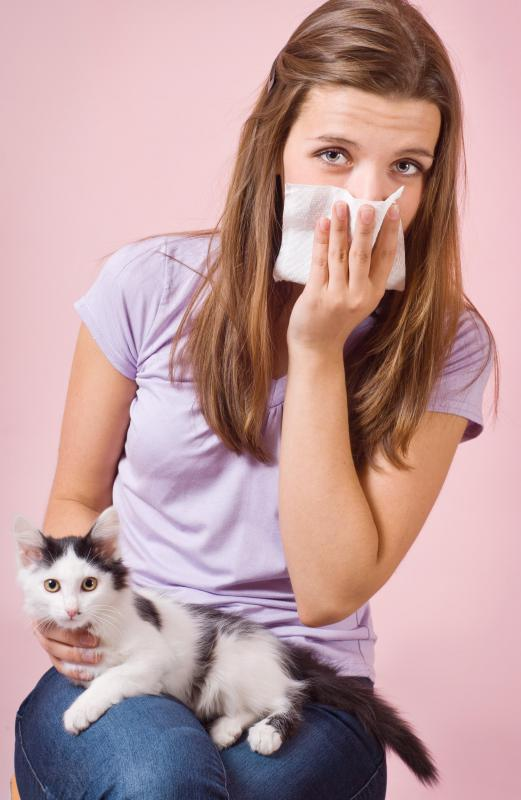 Most ionizers cannot remove many common allergens, including pet dander.