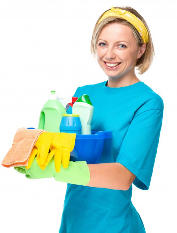 Maids and cleaning staff are common types of household employees.