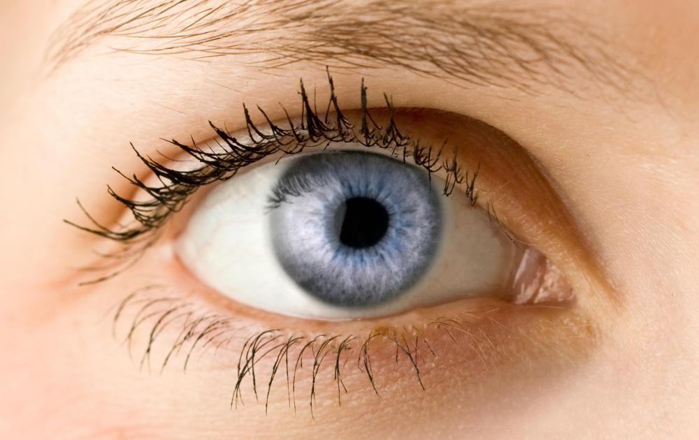 What are the Pros and Cons of Putting Vaseline&Reg; on Eyelashes?